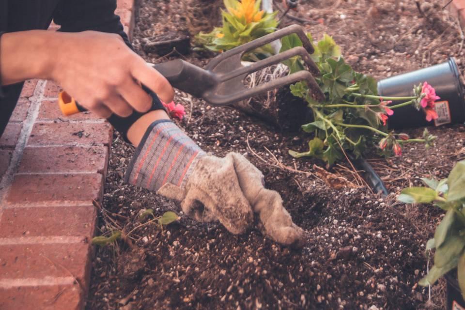 Le Particulier par l'Abeille | Bricolage & Jardinage pour particulier