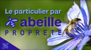 Le Particulier par l'Abeille | Services & Ménage pour particuliers